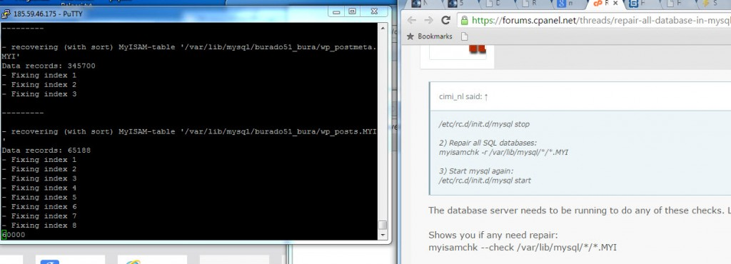 SQL onarma ve optimizasyon (2)